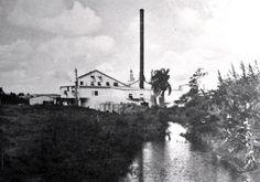 Central Soller, Camuy, Puerto Rico. Operó entre los años 1910 y 1968. Capacidad: 1,300 toneladas por día. Propietarios: Soller Sugar Company, Inc. (1937 ).
