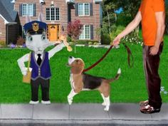 Pets Video - Hooked on Phonics Learn to Read Pre-K - YouTube