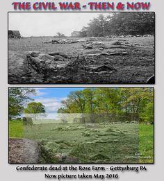 Confederate Dead - Rose Farm 5   by Open Focuz Photography