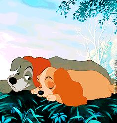 Lady and Tramp, so sweet Walter Elias Disney, Love Scenes, Lady And The Tramp, Great Pictures, Hello Everyone, Dreamworks, Pixar, Childhood Memories, Pikachu
