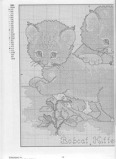 Bobcat Kittens part 2/2