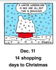 Snoopy Cartoon, Snoopy Comics, Peanuts Cartoon, Peanuts Snoopy, Peanuts Comics, Snoopy Images, Snoopy Pictures, Cute Cartoon Pictures, Cute Cartoon Drawings