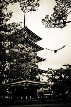 Les oiseaux se moquent que cela soit du bois. Gros meuble. (Zentsû-ji Temple) by Stéphane Barbery on Flickr