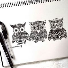 zentangle owls