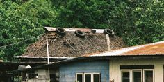roof damaged by wind Roof Restoration, Residential Roofing, Roofing Services, Roofing Materials, House Styles