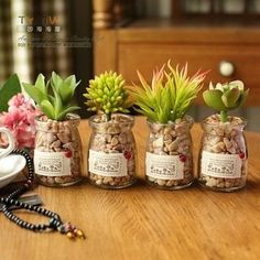 Buy Cottage Dream Artificial Plant (Succulent Plant) at YesStyle.com! Quality products at remarkable prices. FREE WORLDWIDE SHIPPING on orders over US$ 35.