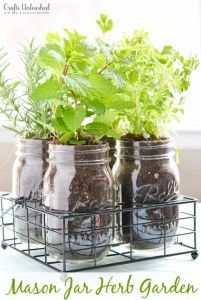 Mason Jar Ideas for Summer - Mason Jar Herb Garden - Mason Jar Crafts, Decor and Gifts, Centerpieces and DIY Projects With Jars That Are Perfect For Summertime - Fun and Easy Lights, Cool Vases, Creative 4th of July Ideas