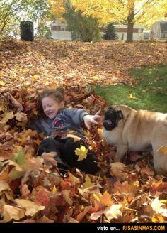 ¿Dónde está el cuello del perro?