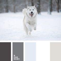 blanco y beige, blanco y gris, celeste grisáceo, color crema, color de la piel, color piel de animales, color piel de león, combinación de colores para invierno, gris y beige, marrón grisáceo, matices de color blanco nieve, matices de color marrón grisáceo, paleta de colores invernales, selección