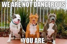 Yep humans can be very dangerous