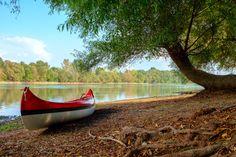 szentendre-strand Hungary, Park, Landscapes, Paisajes, Scenery, Parks