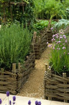 Harpur Garden Images Ltd :: 08mh27 Potager and herb garden raised beds borders edged by wicker natural kitchen crop harvest edible organic ecological chives allium Design: del Buono Gazerwitz, Spencer Fung Architects for Daylesford Organic RHS Chelsea Flower Show 2008 UK Marcus Harpur
