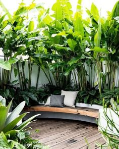 20 Chic Small Courtyard Garden Design Ideas For You With. 20 Chic Small Courtyard Garden Design Ideas For You With an increasing tendency for empty nesters, young couples and singles towards higher density inner city living, and the desire … Tropical Garden Design, Backyard Garden Design, Tropical Landscaping, Small Garden Design, Terrace Garden, Courtyard Design, Natural Landscaping, Tropical Patio, Landscaping Ideas