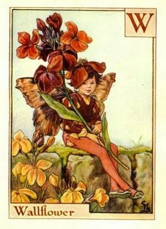 Wallflower Flower Fairy Vintage Print by Cicely Mary Barker. first published in London by Blackie, 1934 in A Flower Fairy Alphabet.