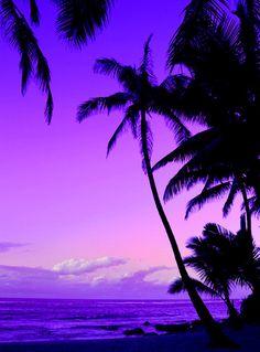...a beautiful violet, lavender sunset....