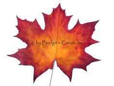 My paper leaves Paper Leaves, Leaf Template, Autumn Leaves, Quilling, Moose Art, Creative, Bedspreads, Fall Leaves, Autumn Leaf Color