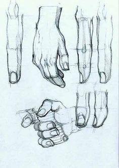 Hand drawing reference | Drawing References and Resources | Scoop.it