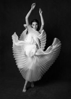 Movement Photography, Dance Photography, Fashion Photography, Swan Lake, Pose Reference, Photo Galleries, Photographic Prints, Statue, Canvas Prints