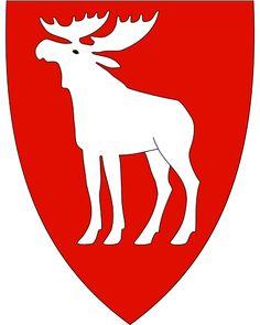 Ringsaker komm. Hedmark fylke