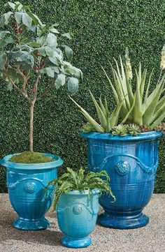 Urn-shaped and adorned with garlands and medallions, these hand-glazed ceramic planters are a staple in French gardens. With the special nature of the reactive glaze, the Azure finish displays a range of variation in tone from soft aqua and turquoise to deep azure. Each planter will appear inherently unique. Our Anduze Indoor/Outdoor Planters can stand alone as pottery pieces or complement your chosen plantings. Trough Planters, Outdoor Planters, Ceramic Planters, Indoor Outdoor, Hand Molding, Large Plants, Planter Boxes, Outdoor Entertaining, Image Shows