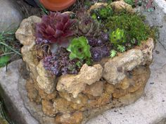 Hypertufa planter made with hypertufa rocks