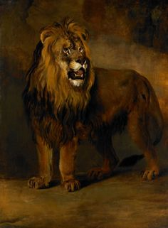 Early 19th century painting by Pieter Gerardus van Os. Lion from King Louis Napoleon's menagerie.