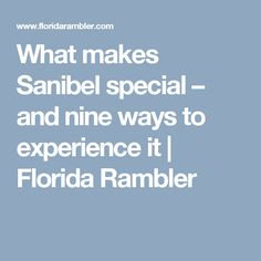 What makes Sanibel special – and nine ways to experience it | Florida Rambler