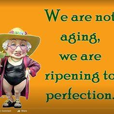 that's right! visit us at gomenopause.com Via google images #menopauseproblems #menopausesymptoms #menopausemoms #menopausemom #menopauserelief #menopausemamma #menopausesupport #menopauseawareness #menopausehelp #menopausehealth #menopausemomma #overcomingmenopause #menopausematters #menopauseremedies #menopausemeadows