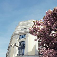 Lyon, rue Edouard Herriot au Printemps