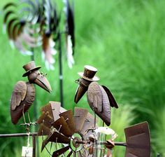 Tierwelt, Foto: M. Schneider
