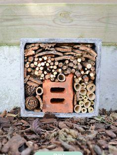 Insectenhotel maken ? Volg de stap voor stap uitleg met foto en maak je eigen insectenhuis voor buiten...