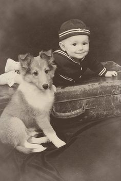 Vintage Collie photo.