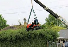 Extreme hedge trimming
