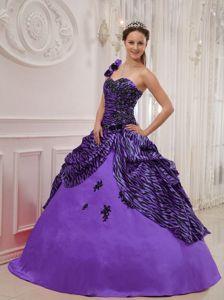 Purple One Shoulder Floor-length Zebra Appliques Sweet Sixteen Dresses