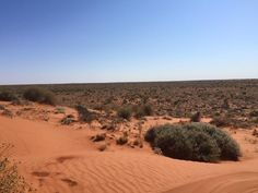To date we've had photos of everything from the reef and the rainforest to Cape York Peninsula, and everywhere in between. This week we will feature some snaps taken by a three police adventurers from the far north, who took on the Simpson Desert for fun, and to raise much needed cash for the Royal Flying Doctor Service (RFDS).