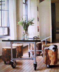 industrial table + stumps on wheels + another cute kitty :)