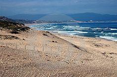 Monterey Beach  ID: 141972 © Mike Brake | Dreamstime Stock Photos
