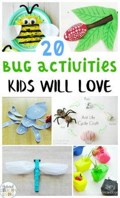 25 Bug Activities for Preschool See our latest activities and ideas first! Close Top Bannereducating children with hands on Bug Activities for PreschoolThese B Insect Activities, Craft Activities For Kids, Kindergarten Activities, Preschool Activities, Preschool Learning, Teaching, Insect Crafts, Preschool Lessons, Fun Learning