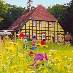 Willkommen im Bio-Hotel Kenners LandLust, dem etwas anderen Biohotel in Deutschland, genauer Norddeutschland, am Rande der Lüneburger Heide, das familienfreundliche Biohotel liegt in Niedersachsen, Wendland, Landkreis Lüchow-Dannenberg, in der Göhrde, nahe der Elbe und Elbtalaue, unweit von Hitzacker und Dannenberg. Die Göhrde ist der große Wald vor unserer Haustür und das Biosphärenreservat Niedersächsische Elbtalaue mit Elbe mit Elbtalaue ist per Rad bequem zu erreichen. Wir sind ein… Familienfreundliche Hotels, Cabin, House Styles, Holiday, 30, Travelling, Home Decor, Wellness, Fitness