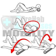 Foam Rolling the Head and Neck  Benefits: Releases tension in neck from repetitive movements in driving computer work and texting.  Helps to correct Forward Head Alignment and Upper Cross Syndrome.  Assists to develop proper Spinal alignment and stability.   Select Exercise RX: Hold and Release Apply pressure to sensitive area for 5-30 seconds or until sensitivity dissipates.  Include Oscillations Turn the Head every 2-3 seconds for 15-30 Seconds.  Target Area: Neck and Back of the Head aka…