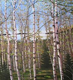 Birches on a Maine Island From Powers Art Gallery