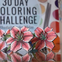 It's officially DAY 1 🎉🎉 Welcome to The Daily Marker 30 Day Coloring Challenge. Click in the top corner to see all the photos. For the first post I'm coloring with @sharpie markers and @tim_holtz distress ink and @altenewllc markers! Whew! The spectacular TIGER LILY is from @powerpoppy illustrated by the talented @marcellahawley CHECK OUT my video on @youtube #thedailymarker30day #sharpie #sharpies #timholtz #distressink #altenew #altenewmarkers #tigerlily #powerpoppy #linkinmyprofile…