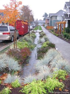 Rain garden Bioswales as seen in the NACTO Urban Street Design Guide. Click image for full information & guide, and visit the Slow Ottawa 'Stormwater Solutions' board for more sustainable water management. Urban Landscape, Landscape Design, Landscape Elements, Rain Garden Design, Water From Air, Water Management, Rainwater Harvesting, Garden Planning, Landscape Architecture