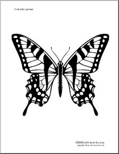 Coloring Page:  Tiger Swallowtail Butterfly - Pretty drawing of a tiger swallowtail butterfly to color.
