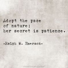 Adopt the pace of nature; her secret is patience // Ralph Waldo Emerson