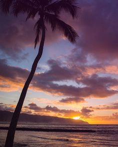 @lululemonhnl Let yourself rest and reenergize this weekend. Preferably under a palm tree watching a sunset.…