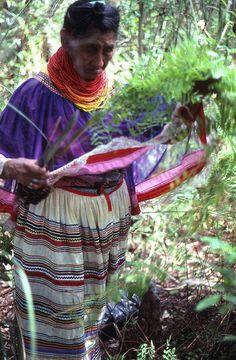 Seminole Healer Susie Billie Collected Medicinal Plants On