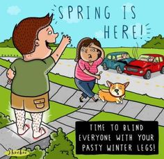 Spring is here. Time to blind everyone with your pasty winter legs! Blind, Funny Cartoons, Funny Memes, Cartoon Humor, Time Cartoon, Funny Sayings, Spring Cartoon, Spring Is Here, Spring Time