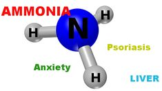 Ammonia toxicity – how to resolve brain fog and anxiety with L-Ornithine – PsoriasisDietPlan.com