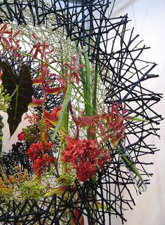 The Singapore Garden Festival